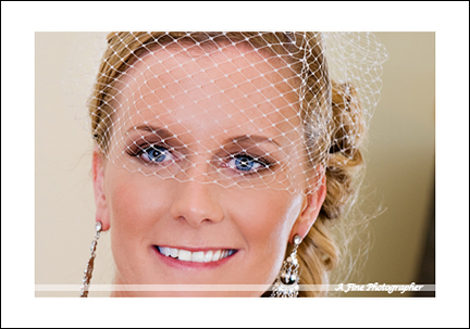denver wedding professionals, denver wedding vendors, colorado wedding professionals, colorado wedding vendors, denver wedding photographer, colorado wedding photographer, denver wedding photography, colorado wedding photography, the wedding connectors
